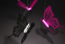 Butterflies lighting - thumbnail_1