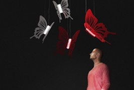 Butterflies lighting - thumbnail_2