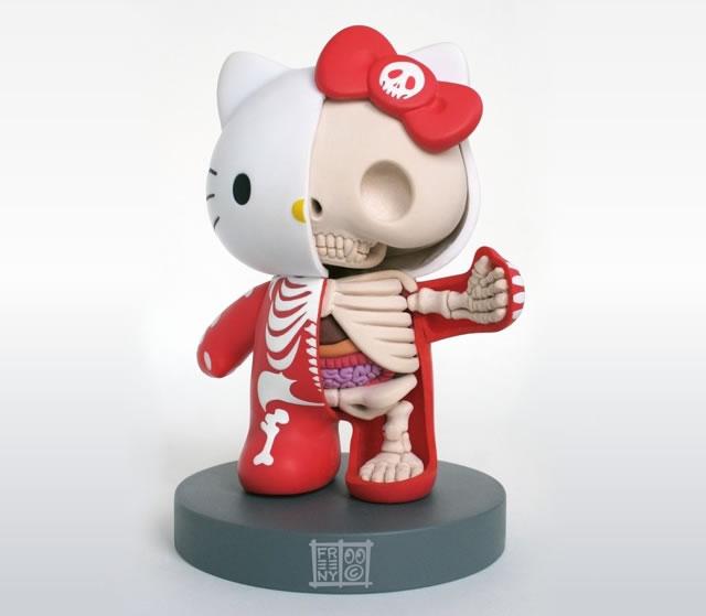 Anatomic toys
