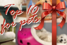 Top 10 gifts for your pets