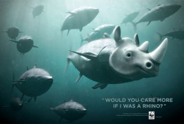 WWF Bluefin Tuna overfishing - thumbnail_3
