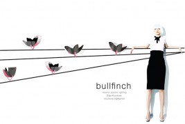 Bullfinch - thumbnail_1