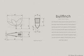 Bullfinch - thumbnail_5