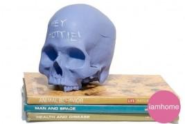 Chalkboard Skulls - thumbnail_3