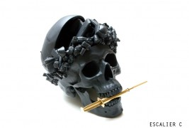 In momentum – skull sculpture - thumbnail_1