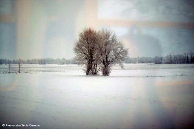Alessandra Tecla Gerevini Photographer