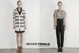 Second Female Fall 2011 - thumbnail_6