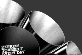Brandon Ricci – Express Yourself Every Day - thumbnail_3