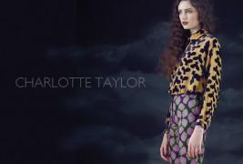 Charlotte Taylor fall/winter 2012 - thumbnail_1