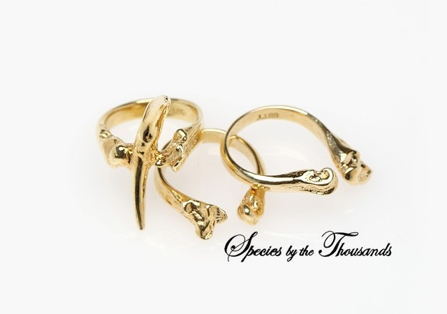 Tooth And Bone Ring Set | Image courtesy of Species by the Thousands