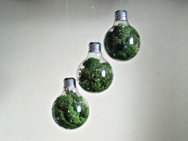 Light bulb terrarium | Image courtesy of eGarden Studio
