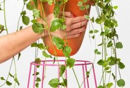 Casa Bosques planters - thumbnail_1