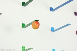 NEWTON: picking fruit - thumbnail_2