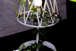 Green lamp - thumbnail_9