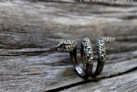 Our Family Jewels - thumbnail_8