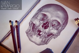 Illustrazioni by Ivan Kamargio - thumbnail_2