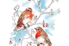 Illustrazioni by Willa Gebbie - thumbnail_8