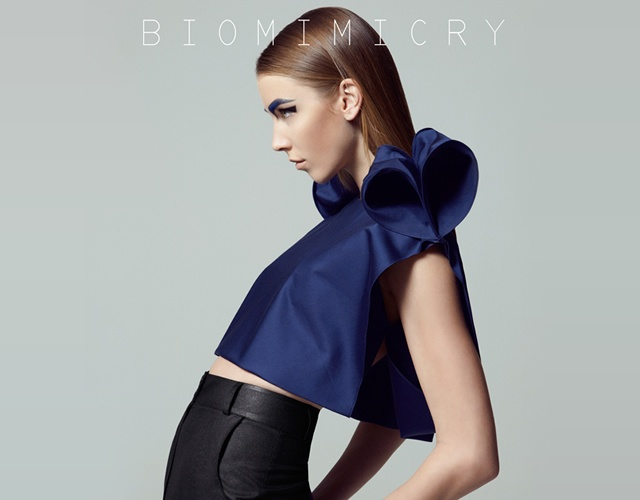 Biomimicry by Burcu Varol | Image courtesy of Burcu Varol