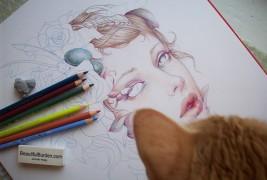 Illustrations by Jennifer Healy - thumbnail_3