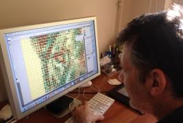 Ritratti mosaico di leoni - thumbnail_5
