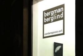 Bergman Berglind gallery - thumbnail_4