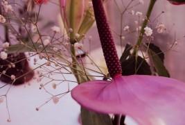 Clorinda Pascale - thumbnail_4