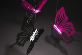 Butterflies lighting - thumbnail_1