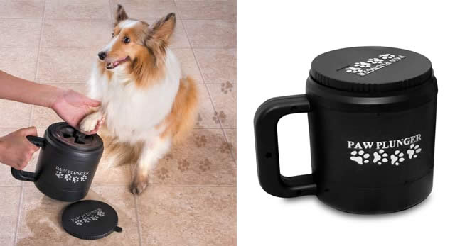 Top 10 gifts for your pets - Photo 1