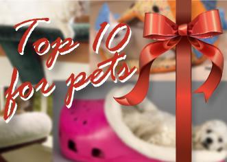 Top 10 regali per i tuoi animali