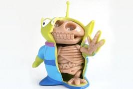 Anatomic toys - thumbnail_3
