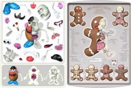 Anatomic toys - thumbnail_4
