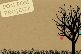 The pom-pom project - thumbnail_1