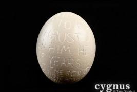 Cygnus experimental typography - thumbnail_1
