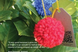 The pom-pom project - thumbnail_3