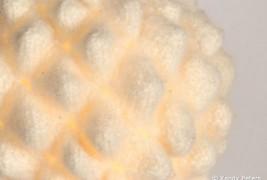 Knit felt lamp - thumbnail_5