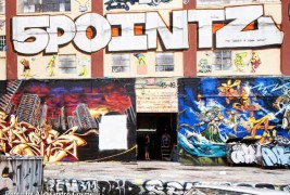 Save the 5Pointz