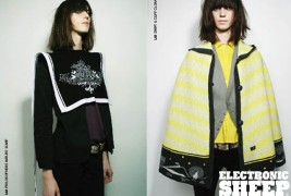 Electronic Sheep fall/winter 2011 - thumbnail_5