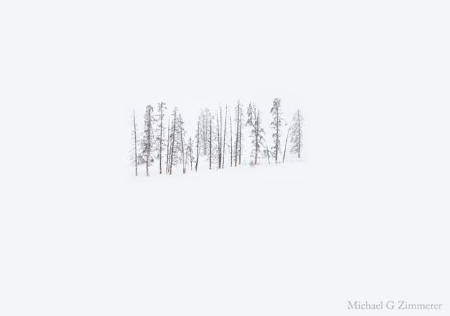 Orizzonte bianco