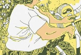 Illustrationi by Giorgio Fratini - thumbnail_6