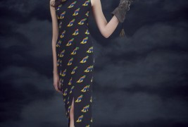 Charlotte Taylor fall/winter 2012 - thumbnail_8