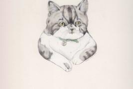 Drawings by Sarah McNeil - thumbnail_8