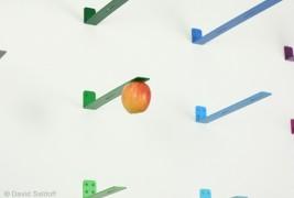 NEWTON: picking fruit - thumbnail_2