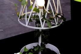 Green lamp - thumbnail_9