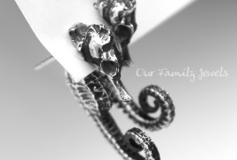 Our Family Jewels - thumbnail_3