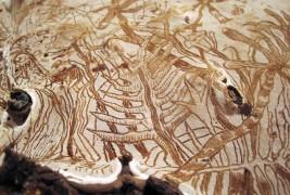 Funghi artistici - thumbnail_2