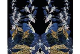 Le opere di Eleanor Sanderson Pajak - thumbnail_2