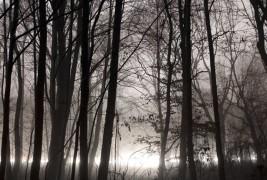 Lumen by Jurgen Heckel - thumbnail_1