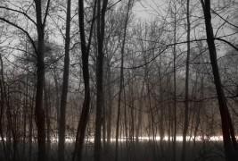 Lumen by Jurgen Heckel - thumbnail_3