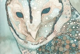Illustrations by Tamara Phillips - thumbnail_2